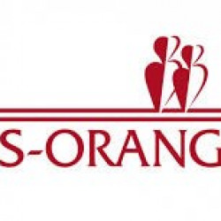 Cession de bail Local commercial Ris-Orangis 146 m²