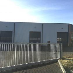 Location Local d'activités Sandouville 1400 m²