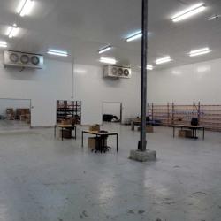 Location Local d'activités Thiais 1060 m²