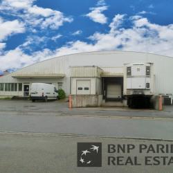 Vente Local d'activités Rennes 3800 m²