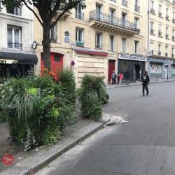 Cession de bail Local commercial Paris 9ème 13 m²