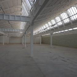 Location Local d'activités Décines-Charpieu 2375 m²