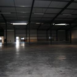 Location Local d'activités Saint-Alban 1560 m²