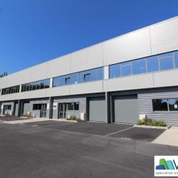 Location Local d'activités Bussy-Saint-Martin 387 m²