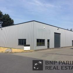 Location Local d'activités Neuville-en-Ferrain (59960)