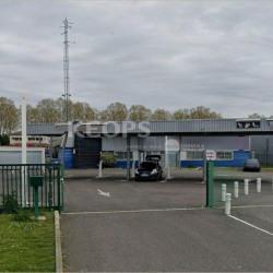 Location Local d'activités Castelnau-d'Estrétefonds 512 m²