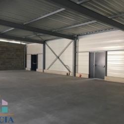 Location Local commercial Tignieu-Jameyzieu 630 m²