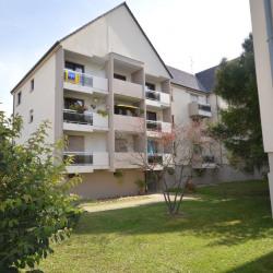 Vente Bureau Illkirch-Graffenstaden 76,82 m²