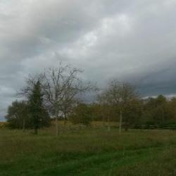 Vente Terrain Montlouis-sur-Loire 12008 m²