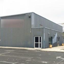 Location Local d'activités Villeneuve-d'Ascq 420 m²