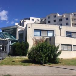 Location Bureau Saint-Martin-d'Hères 1100 m²