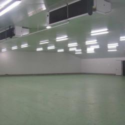 Location Local d'activités Bayonne 790 m²