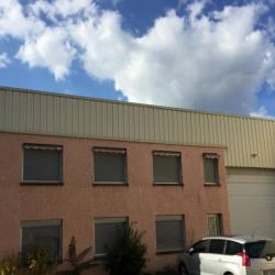 Vente Local d'activités Vénissieux 320 m²