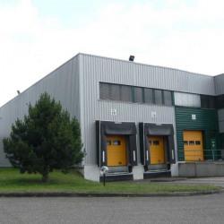Location Entrepôt Hœrdt (67720)