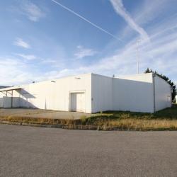 Vente Local commercial Saverdun 2000 m²