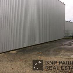 Vente Local d'activités Rambouillet (78120)