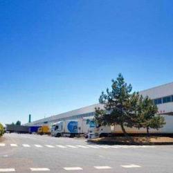 Location Entrepôt Aulnay-sous-Bois 1258 m²