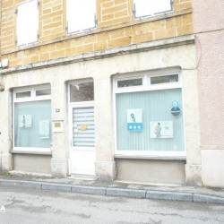 Location Local commercial Bessenay 0 m²