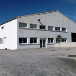 Location Local d'activités Clermont-Ferrand (63000)