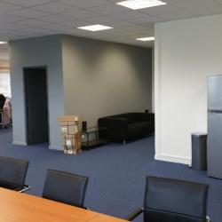Location Bureau Ferrières-en-Brie 152 m²