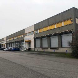 Location Entrepôt Strasbourg 12454 m²