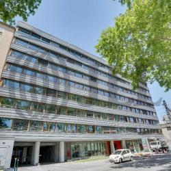 Location Bureau Lyon 5ème 446 m²