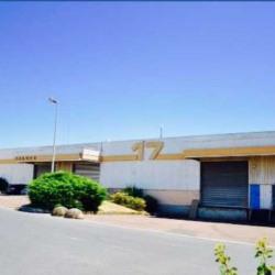 Location Entrepôt Aulnay-sous-Bois 413 m²