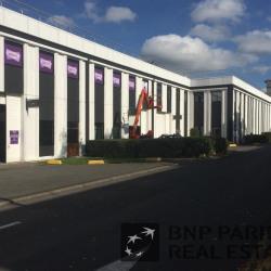 Location Local d'activités Lognes 408 m²