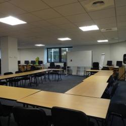 Location Bureau Toulouse 251,17 m²