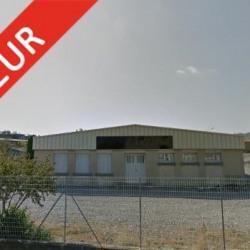 Vente Local d'activités Guilherand-Granges 730 m²