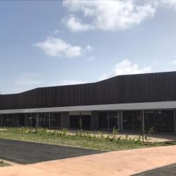 Vente Local d'activités Matoury 233 m²