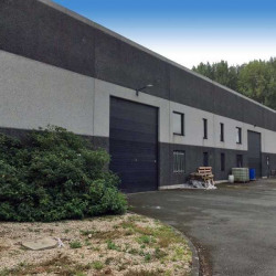Location Local d'activités Templeuve 1100 m²