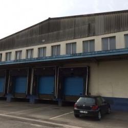 Vente Local d'activités Mulhouse 2100 m²
