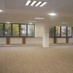 Location Bureau Le Kremlin-Bicêtre 135 m²