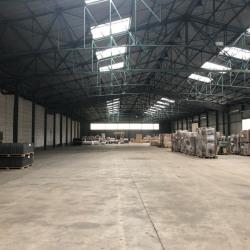 Location Entrepôt Sandouville 4500 m²