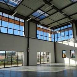 Vente Local d'activités Collégien 6996 m²