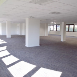 Location Bureau Limonest 4684 m²