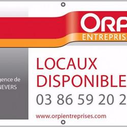 Location Local d'activités Aubigny-sur-Nère 410 m²