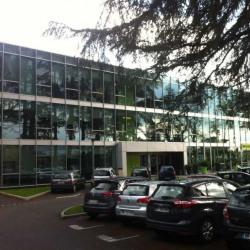 Location Bureau Limonest 765,02 m²