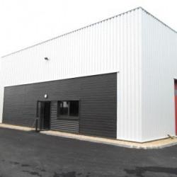 Vente Local d'activités Domloup 200 m²