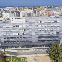 Location Bureau Montpellier 798 m²