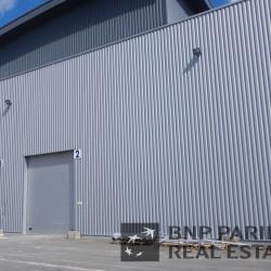 Location Local d'activités Saint-Jean-de-la-Ruelle 300 m²