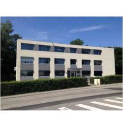 Vente Bureau Dardilly 50 m²