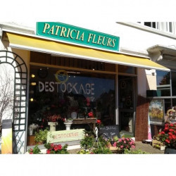 Location Local commercial Trégastel 0 m²