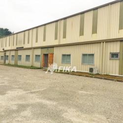 Vente Entrepôt Canéjan 2300 m²