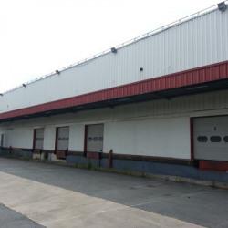 Location Entrepôt Servon 3949 m²