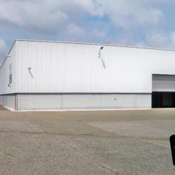 Location Local d'activités Lucé 8560 m²