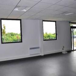 Location Local d'activités Meaux 1293 m²
