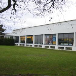 Vente Bureau Illkirch-Graffenstaden 285 m²