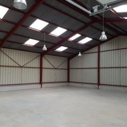 Location Entrepôt Villebon-sur-Yvette 225 m²